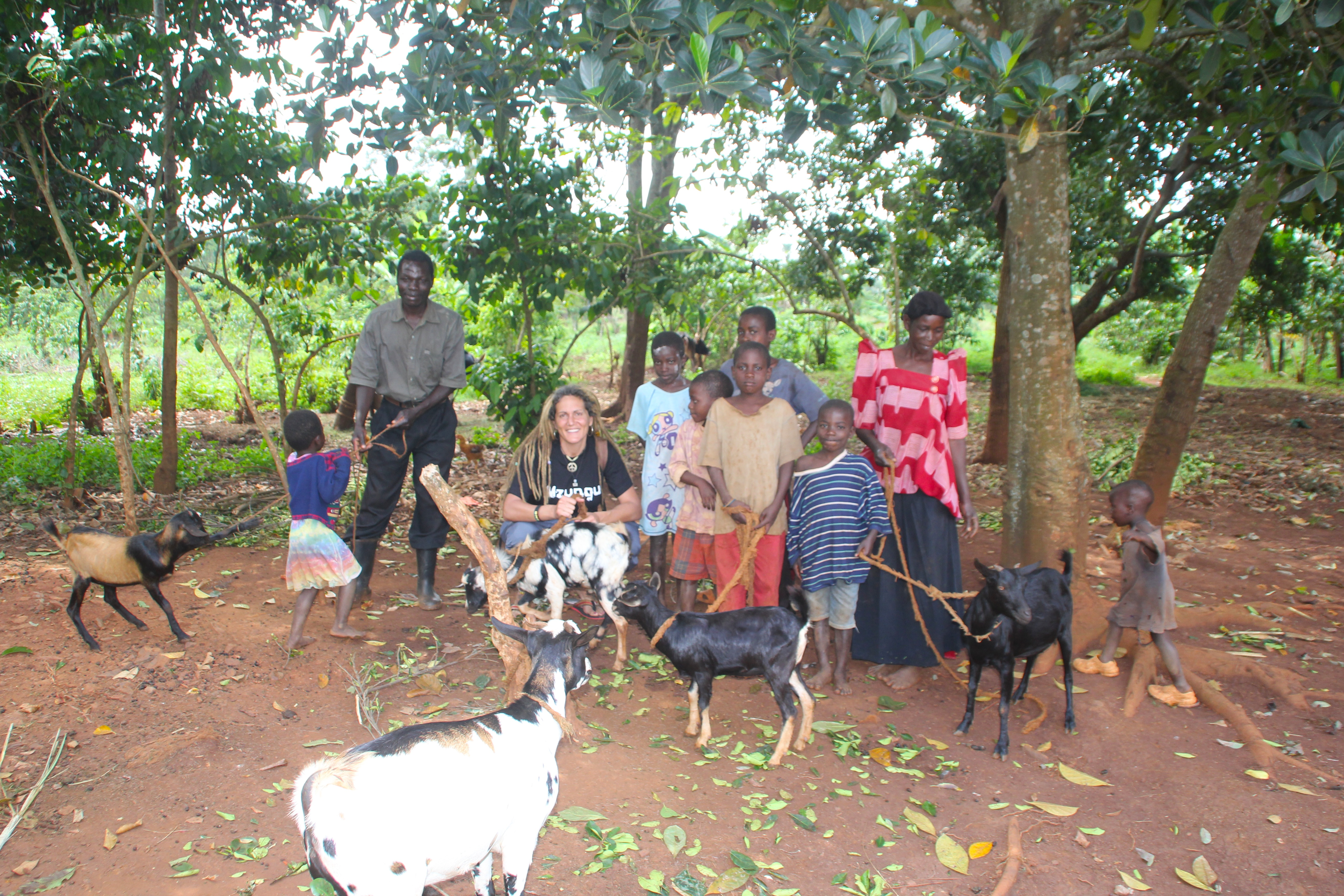 Self-Sustainable Living....Raising Goats For Eating And To Make Money
